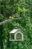 Bird house hanging Stock Images