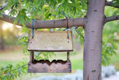 Bird house hanging from the tree. Royalty Free Stock Photo