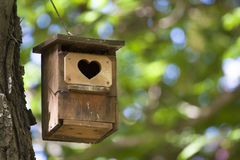 Bird house with the heart shapped entrance. royalty free stock image