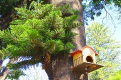 Bird house II. Bird house, city of atlixco, mexican state of Puebla royalty free stock image