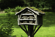 Bird house with its own roof garden Royalty Free Stock Image