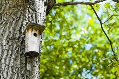 Bird house landscape. Landscape with bird house on the tree trunk stock images