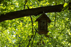 Bird House. A little bird house from wood hanging by a branche stock photo