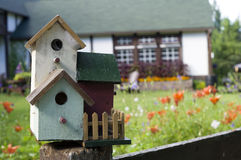 Bird House. Multi-story bird house with cob webs at the cottage stock photos