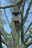 Bird house nest box Royalty Free Stock Images