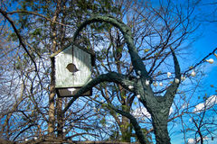 Bird house Stock Image