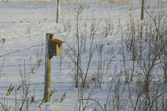 Bird House On The Winter Prairie Stock Photo