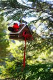 Bird House Ornament Background. Christmas ornament hanging on a fir tree branch Stock Photo