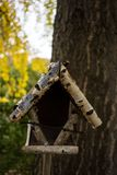 Bird house out of wood front view. With tree royalty free stock photography