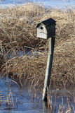 Bird House with reeds in the background stock images