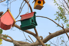 Bird house. A Bird`s House on a Tree a Tiny handmade house or shelter for Little Birds. protecting them from Hot Summer and Cold Winter stock photo