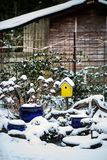 Bird house with seeds to feed birds in winter time Royalty Free Stock Photo