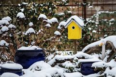 Bird house with seeds to feed birds in winter time Royalty Free Stock Photos
