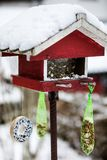 Bird house with seeds to feed birds in winter time royalty free stock photography