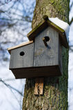 Bird house with snow Royalty Free Stock Image