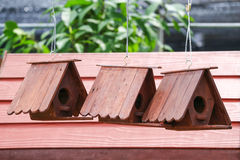 Bird house in the spring garden Royalty Free Stock Image