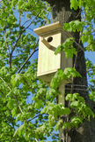 Bird house in the spring park Stock Photos