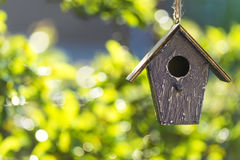 Bird House in Summer Sunshine & Green Leaves. A bird house or bird box in summer or spring sunshine with natural green leaves background Royalty Free Stock Images