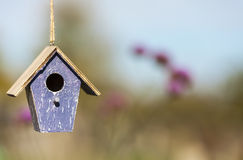 Bird House in Sunshine with Country Flowers Royalty Free Stock Images