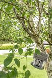 Bird house suspended on tree. Small bird house suspended on a tree in the garden of a mansion royalty free stock photo