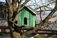 Bird house on the tree stock images