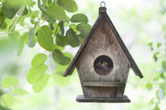Bird house. On the tree stock photos