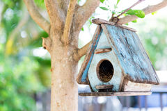 Bird House. On a tree royalty free stock photography