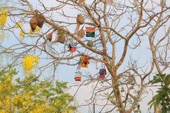 Bird house. On the tree royalty free stock photos