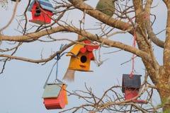 Bird house. On the tree stock photos