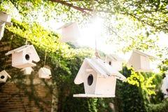 Bird House on tree in Autumn Fall Sunshine & green Leaves bokeh Royalty Free Stock Image