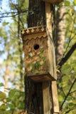 Bird house on the tree Stock Image