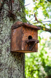 Bird house on a tree in the forest Royalty Free Stock Photo