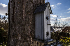 Bird house. On tree in garden Stock Image