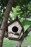 Bird house. On the tree with garden background Royalty Free Stock Photo