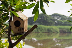 Bird house. On the tree with river background Royalty Free Stock Photo