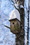 A bird house on a tree with a snow cup on top Royalty Free Stock Photography