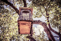 Bird house. On a tree, summer time royalty free stock images