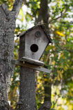 Bird house on a tree - vertical view Stock Image
