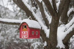 Bird house on tree in winter. Red bird house hanging outdoors in winter on tree covered with snow royalty free stock photos