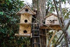 Bird house in the tree wooden bird box. Bird house in the tree wooden bird box stock image
