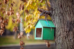 Bird house on the tree Stock Photography