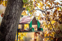 Bird house on the tree. Wooden bird house of green color on the tree stock photo