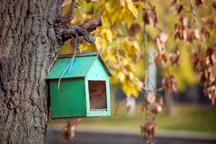 Bird house on the tree Royalty Free Stock Photography