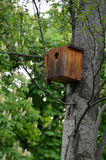 Bird house on tree. Wooden bird house on tree in the park Royalty Free Stock Photography