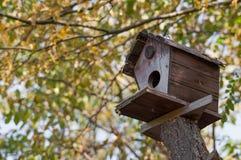 Bird house on a tree Stock Photos