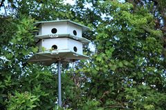 Bird house and trees. An image of bird house royalty free stock photo