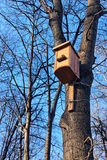 Bird house on the trunk Stock Photos