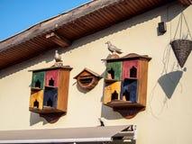 Bird house. On the wall stock photos