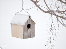 Bird house in winter. With snow falling on it Royalty Free Stock Photography