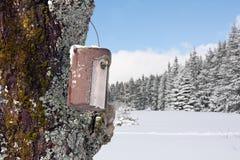 Bird house in winter Stock Photo